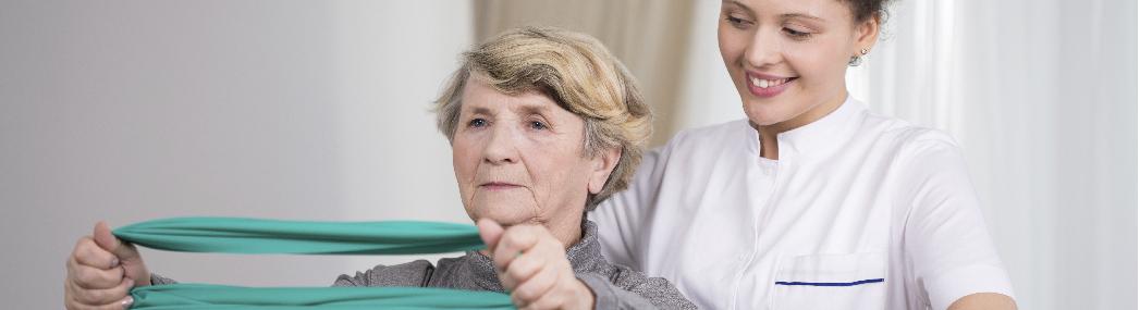 fysiotherapie den bosch Fysiotherapie Den Bosch fysiolangerthuis